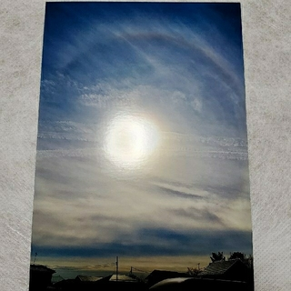 ハロの写真と叶結びのストラップお守り(キーホルダー/ストラップ)