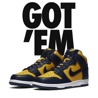 NIKE - 30cm 送料込み NIKE DUNK HI MICHIGAN
