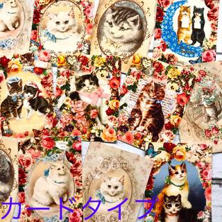 NC03 花満開♡ロマンティック猫ちゃんのカード 16枚(カード/レター/ラッピング)