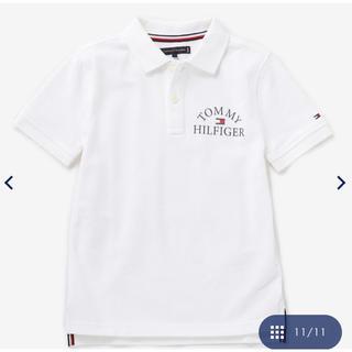 トミーヒルフィガー(TOMMY HILFIGER)の新品 トミーヒルフィガー ポロシャツ(Tシャツ/カットソー)