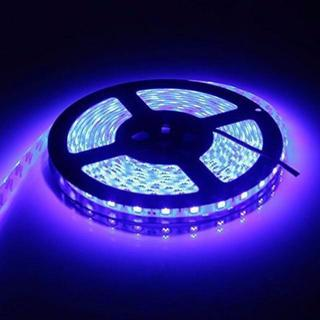 LEDテープ 防水 24V 5m 300連SMD5050 ブルー 青 白ベース(ローテーブル)
