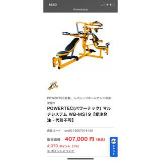 【1万値下げ】POWERTEC (パワーテック) マルチシステム 美品(トレーニング用品)