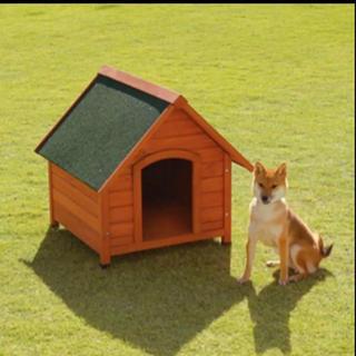 スヌーピー(SNOOPY)の犬小屋(犬)