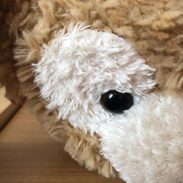 ダッフィー(ダッフィー)のダッフィー コインケース エンタメ/ホビーのおもちゃ/ぬいぐるみ(キャラクターグッズ)の商品写真