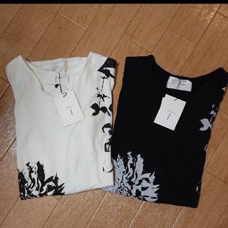 antiqua - アンティカ  Tシャツ  カットソー  2枚セット