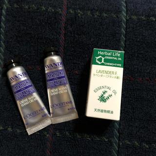 セイカツノキ(生活の木)の生活の木 アロマ ラベンダー(3ml)とロクシタンハンドクリーム(エッセンシャルオイル(精油))