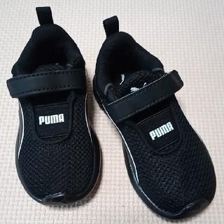 PUMA - 【新品・未使用】幼児PUMA(プーマ)スニーカー(13センチ)