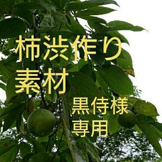 無農薬 渋柿 青柿 柿渋染め用 摘蕾柿(フルーツ)