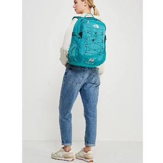 THE NORTH FACE - 新品 THE NORTH FACE リュック ミント