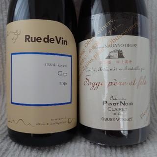 長野県ワイン2本セット(ワイン)