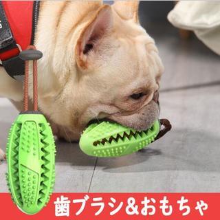 【世界で大ヒット】犬の歯磨き、おもちゃ、犬のストレス発散、知育グッズ(犬)