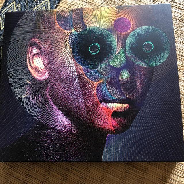 The Insulated World(初回生産限定盤) エンタメ/ホビーのCD(ポップス/ロック(邦楽))の商品写真