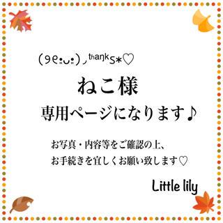 ねこ様【1-ピンク】樹脂ピアス(ピアス)