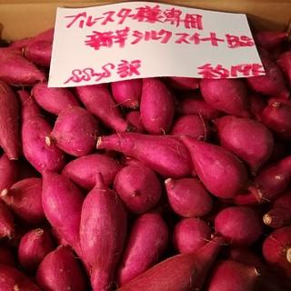 ブルースター様専用 超お得!!訳☆オーダー☆甘い新芋シルク(小)約19Kです。(野菜)