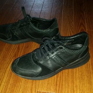 ドルチェアンドガッバーナ(DOLCE&GABBANA)のDOLCE&GABBANA ドルチェ&ガッバーナ スニーカー シューズ 靴(スニーカー)