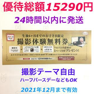 スタジオマリオ 優待券 (総額15290円相当分優待) 匿名配送