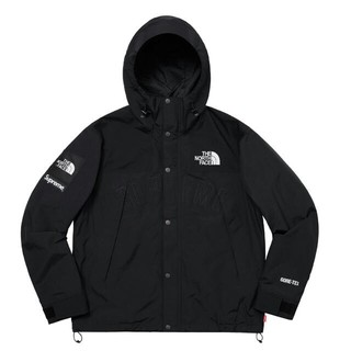 Supreme - supreme 19ss north face mountain parka