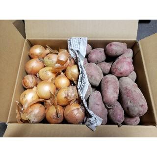 北海道 北見産じゃがいも レッドムーン ミニ玉ねぎ 8kg(野菜)