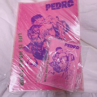 PEDRO サイン入りポストカード クリアファイル まとめうり