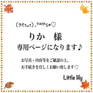 りか様【3-4ヴァイオレット】蝶バネイヤリング(ピアス)
