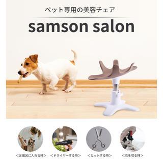 サムソンサロン(犬)