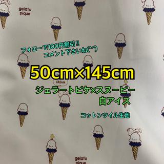 ジェラートピケ(gelato pique)のジェラートピケ  ✖️スヌーピー アイス 紺色(生地/糸)