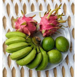 旬のフルーツセット♪ 沖縄産 島バナナ、ドラゴンフルーツ、グァバ(フルーツ)