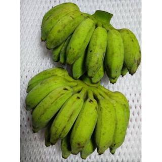 沖縄産 無農薬 絶品 アップルバナナ コンパクトにぎっしり1kg(フルーツ)