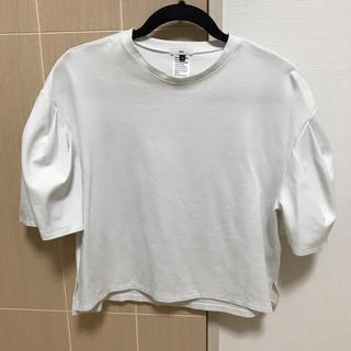ダブルスタンダードクロージング(DOUBLE STANDARD CLOTHING)の☆ダブスタ 白Tシャツ☆(Tシャツ(半袖/袖なし))