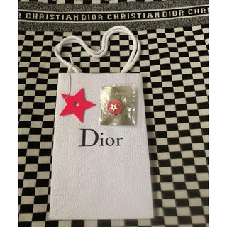 Dior - 非売品 ディオール  ピンバッジ スター チャーム ショッパー 紙袋 ラウール
