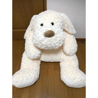 コストコ(コストコ)のコストコ ぬいぐるみ イヌ 犬 ホワイト(ぬいぐるみ)