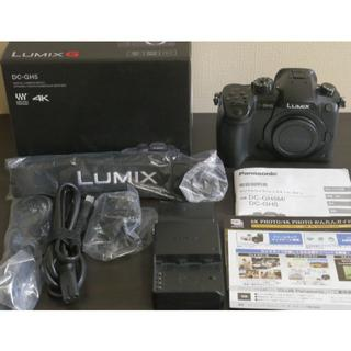 Panasonic - パナソニック ミラーレス一眼カメラ ルミックス GH5 ボディ