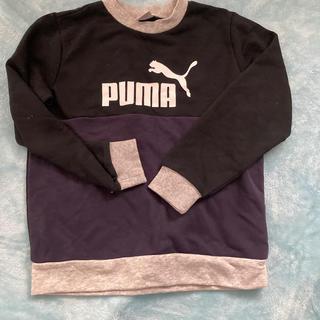 PUMA - 140 PUMA トレーナー 美品