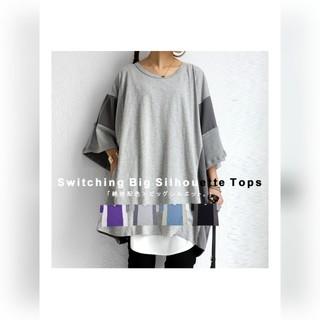アンティカ(antiqua)のカラーブロッキングビッグT(Tシャツ(長袖/七分))