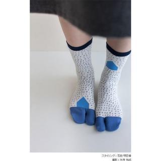 SOU・SOU - SOU・SOU SOUSOU 足袋下 普通丈 冬の朝 つくも 女 新品