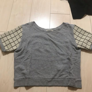ローズバッド(ROSE BUD)のROSEBUD 短めTシャツ 半袖柄 (Tシャツ(半袖/袖なし))