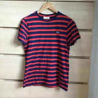 LACOSTE - 【複数割】人気 ラコステ Lacoste 半袖 Tシャツ Sサイズ (サイズ3)