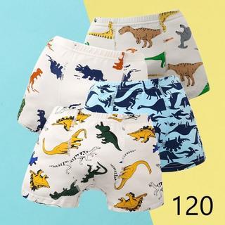 男の子恐竜ボクサーパンツ 子供 キッズ 下着(120cm) 4枚