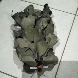 ユーカリの切り枝 ドライ 実物K(ドライフラワー)