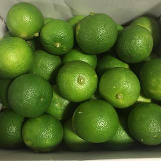 徳島県産すだち 約1キロ(野菜)