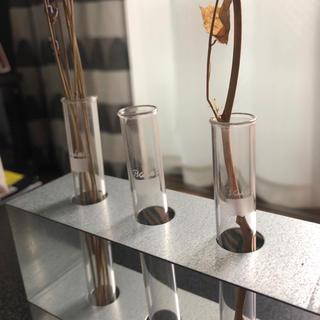 フランフラン(Francfranc)の試験管スタンド 試験管立て ステンレス  花瓶 試験管 ドライフラワー(花瓶)