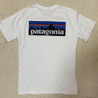 パタゴニア プリント Tシャツ 白