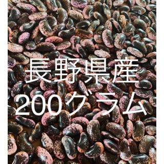 長野県産 200g 紫花豆 9/25採れたて!(野菜)