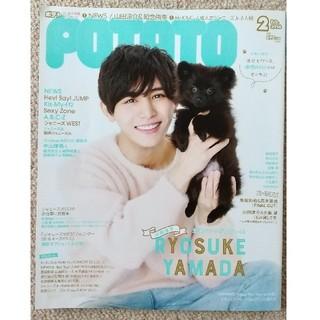 Johnny's - 丸ごと1冊 POTATO (ポテト) 2018年 02月号 NEWS