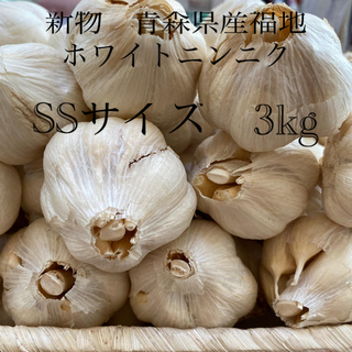 新物青森県産福地ホワイトニンニク SSサイズ3kg(野菜)