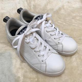 adidas - ★週末限定★adidas スニーカー(24.0)