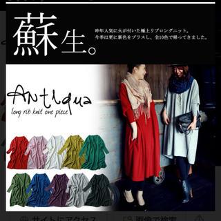 アンティカ(antiqua)の美品 アンティカ リブロングニットワンピース(ロングワンピース/マキシワンピース)