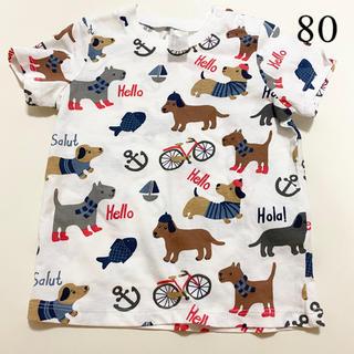 エイチアンドエム(H&M)の【新品未使用】犬 ティシャツ  80(Tシャツ)
