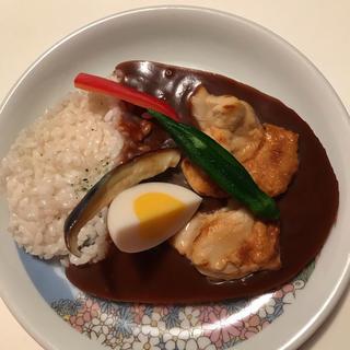 食品サンプル チキンカレー