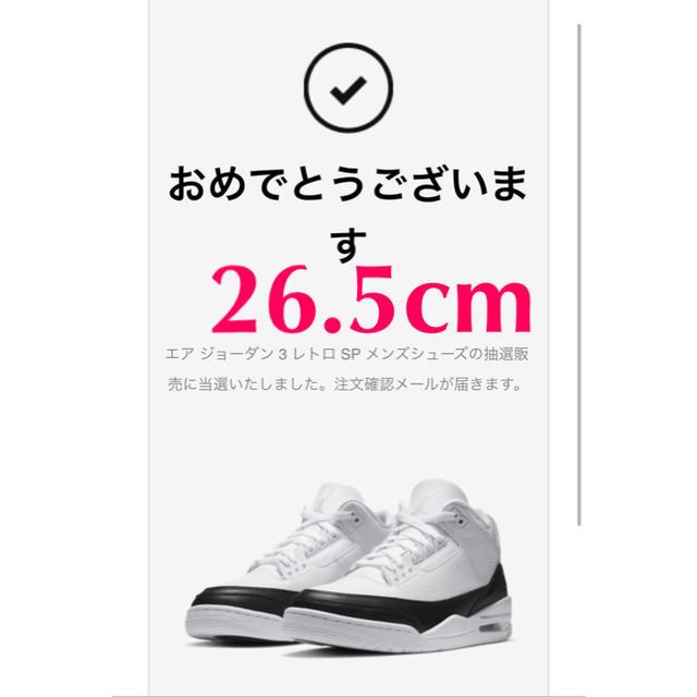 NIKE(ナイキ)のNIKE × Fragment エアジョーダン3 メンズの靴/シューズ(スニーカー)の商品写真